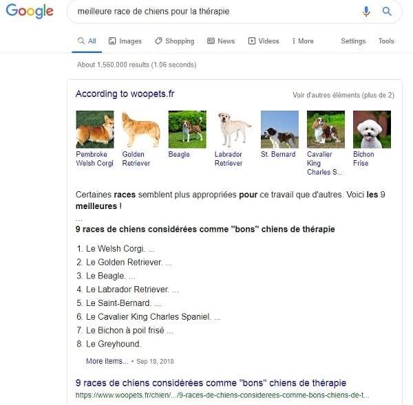 Marketing SEO pour les meilleurs races de chien pour la thérapie