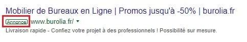 Un exemple de publicité Google