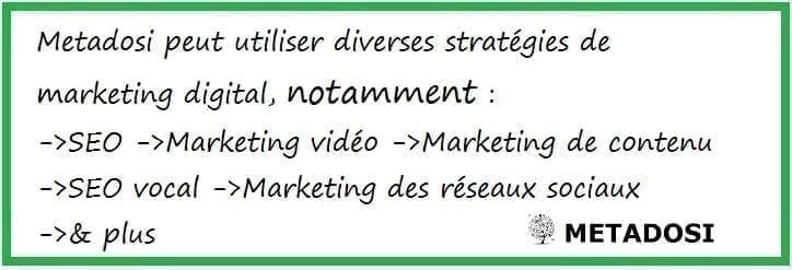 DealerDosi de Metadosi comprend plusieurs stratégies comme le référencement, le marketing de contenu et le marketing sur les réseaux sociaux