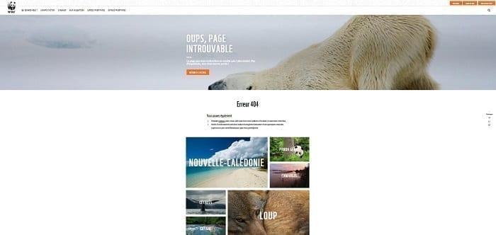 La page 404 du WWF