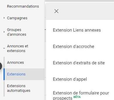 Options de Google Ads