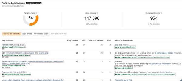 Résultats du profil des backlinks de l'outil de contrôle des backlinks de Ahrefs